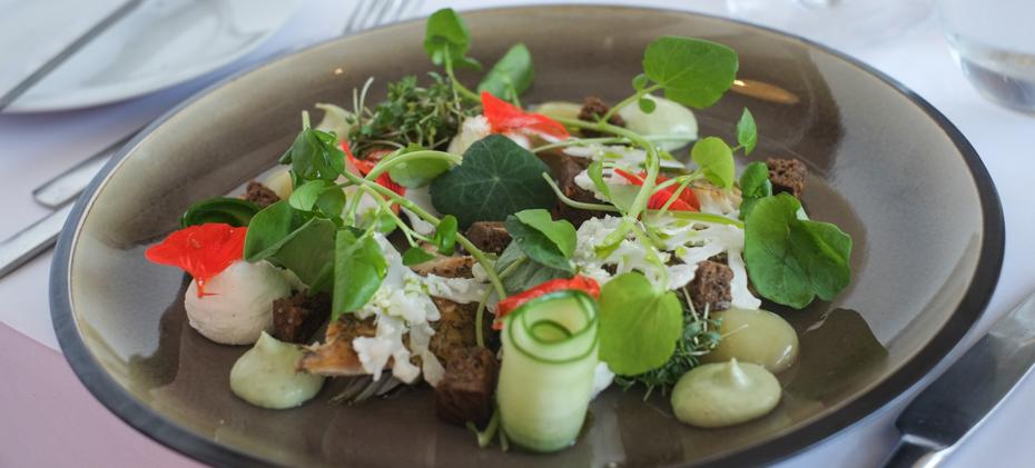 En forret med makrel på Restaurant ET ved åen i Aarhus_