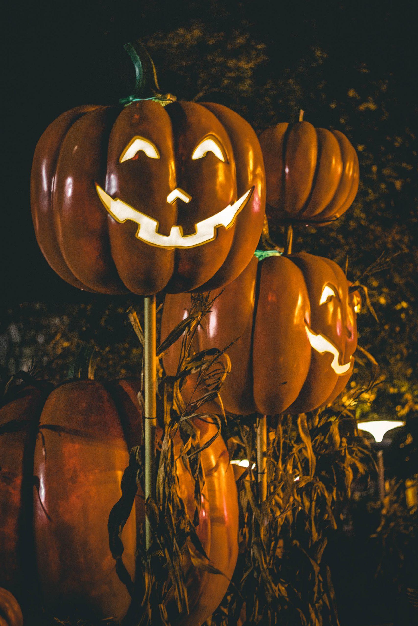 Uhyggen breder sig: Friheden fik flot start på Halloween