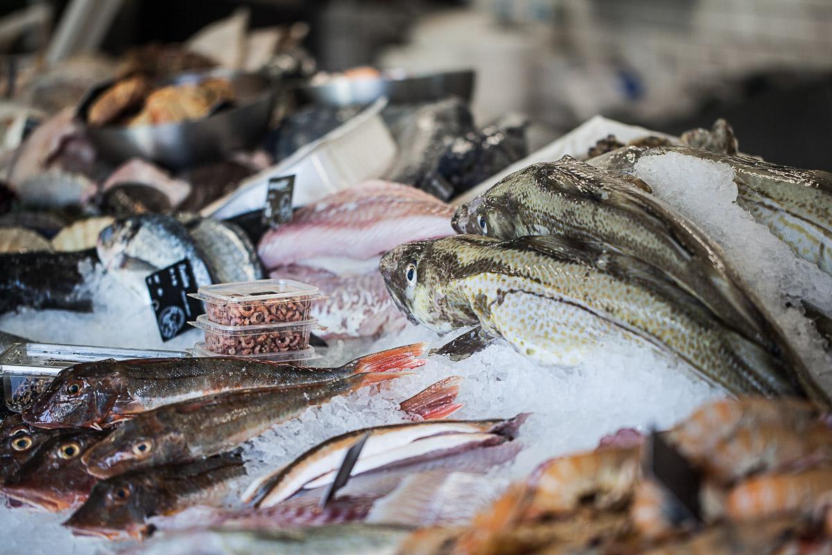 fisk og skaldyrsfest - Havnens Fiskehus