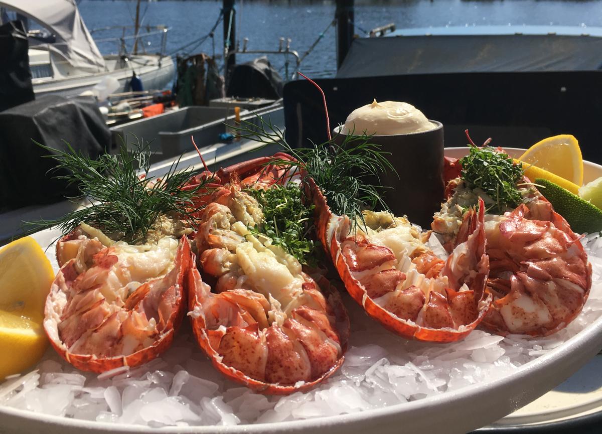 Havnens Fiskehus: Fredag lander der et kæmpe parti hummere - prisene er i bund