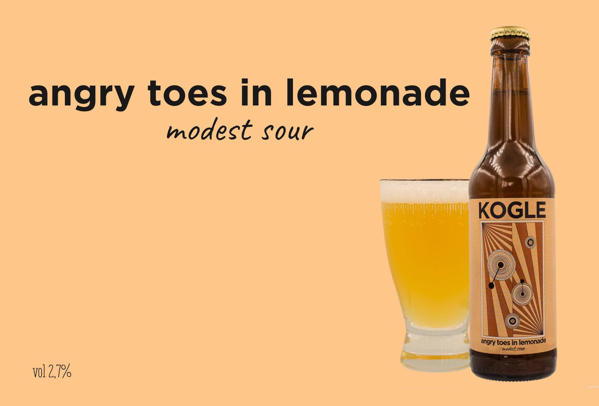 Ny øl på markedet: Masser af smag - lav på alkohol