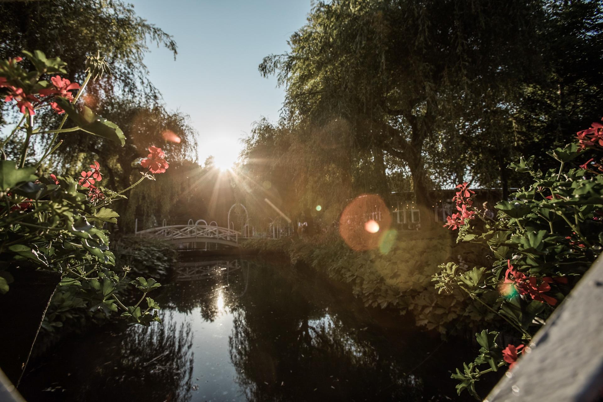 Tivoli Friheden: Vil skabe landets største blomsterfestival