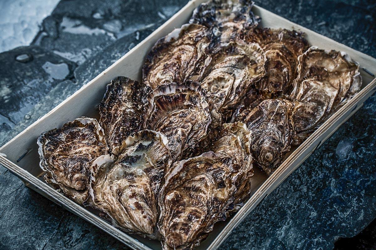 Lær at åbne østers som en proff: Havnens Fiskehus laver mini østers-skole