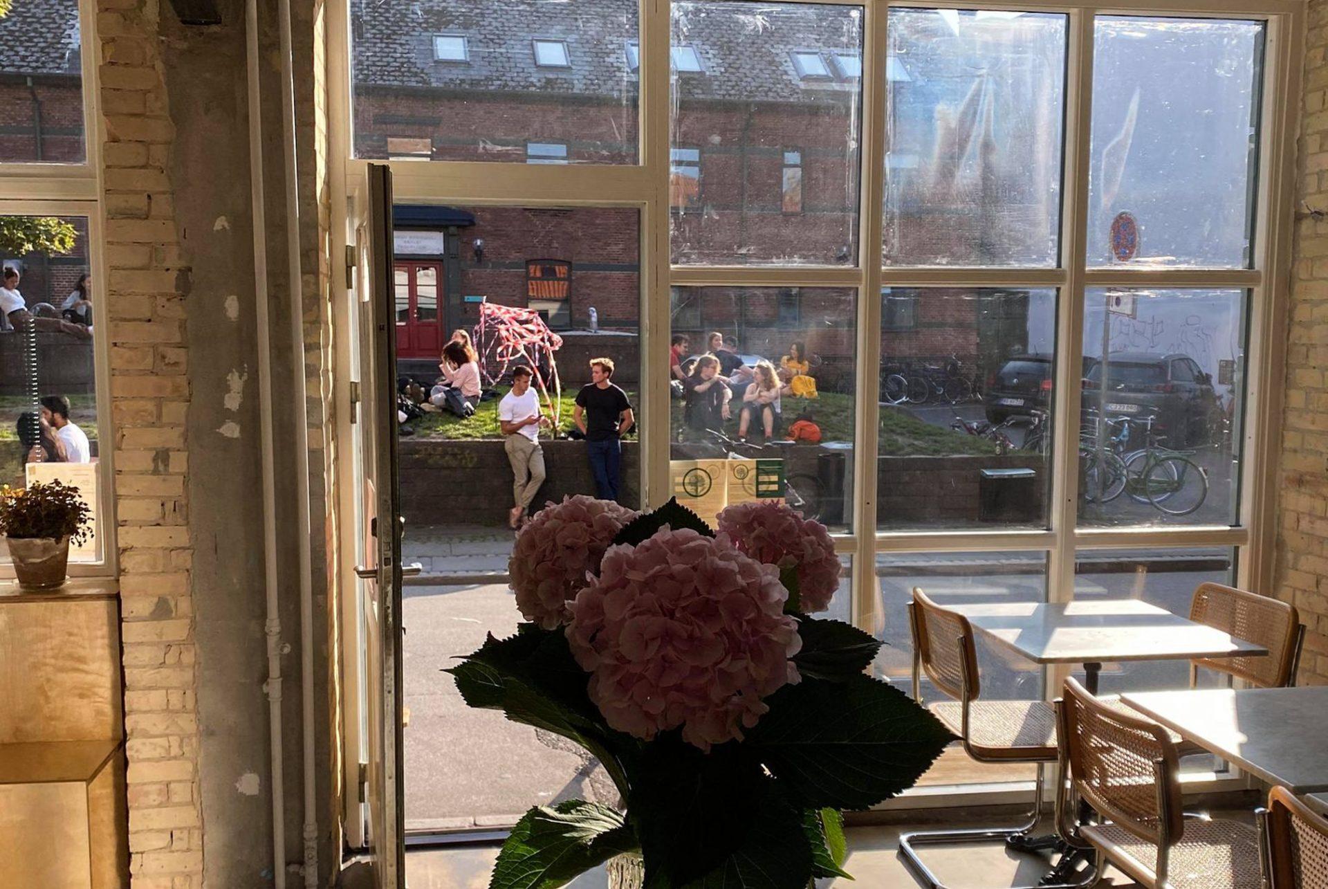 Kalder hele Aarhus: Plantfood åbner i Latinerkvarteret