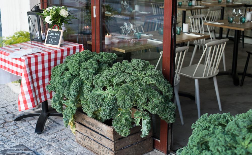 Nu med grønkål på Restaurant Pondus