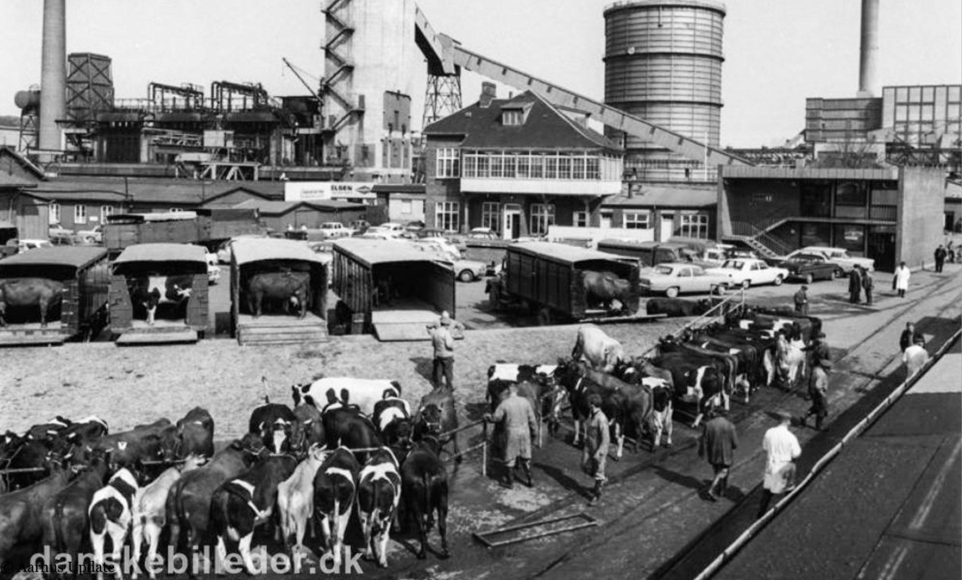 Historie på havnen: Hvad skal der ske med Sydhavnen?