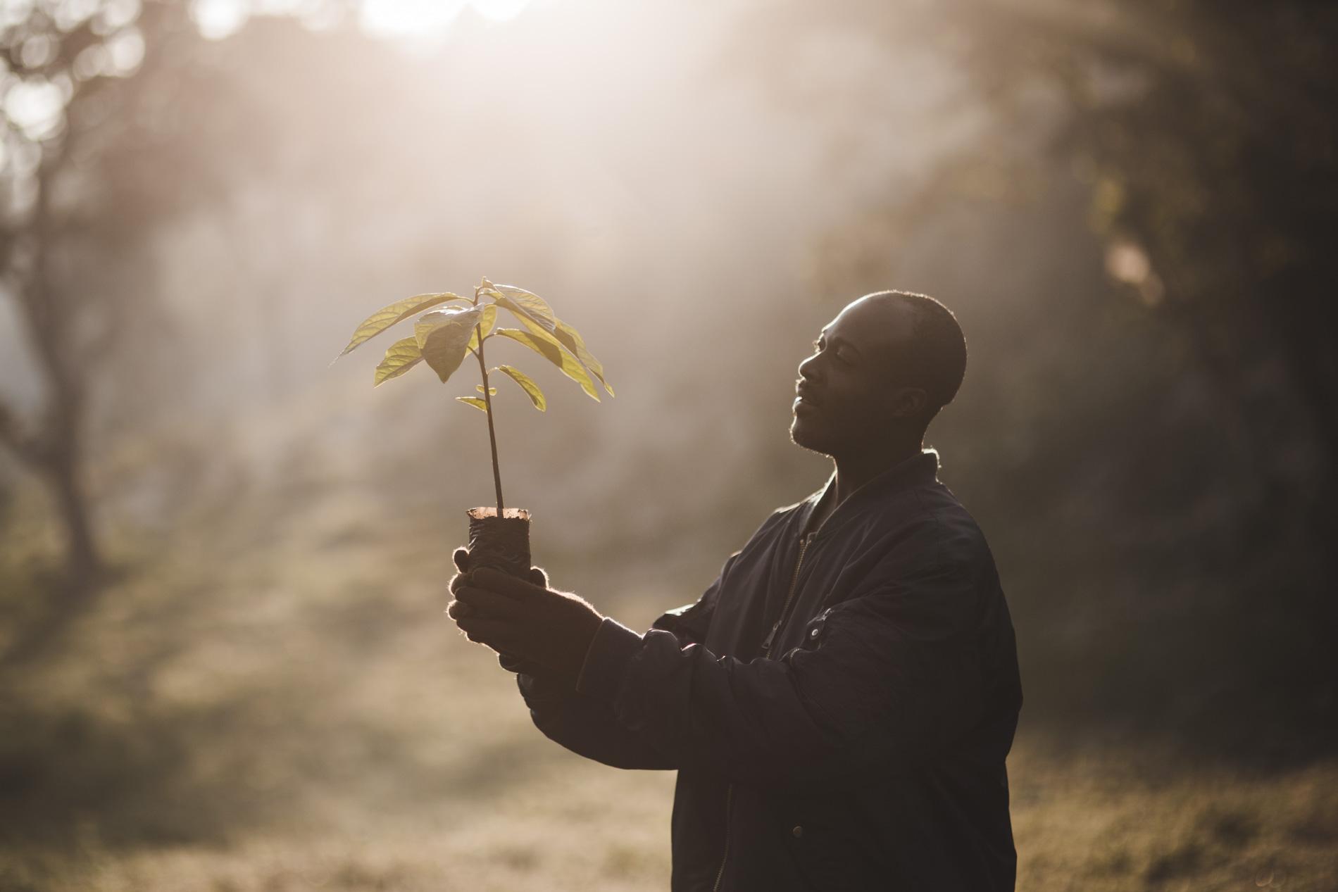 Eventyrsport sætter fokus på bæredygtighed: Naturelskere planter træer i Madagaskar