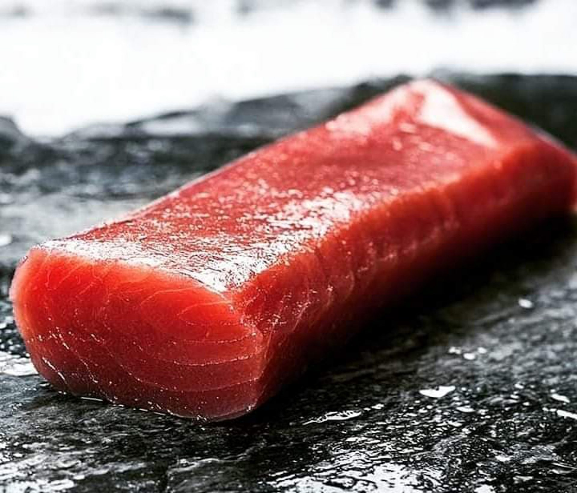 Havnens Fiskehus lander stor fangst: Nordisk bluefin tunfisk sælges i forretningen lørdag