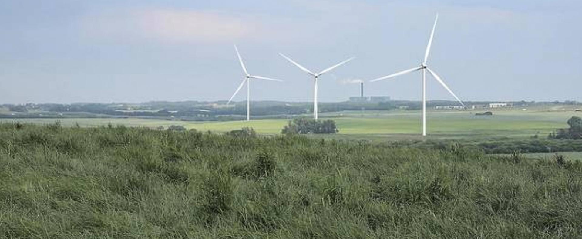 Høring starter på onsdag:Skal Aarhus have 150 meter høje vindmøller?