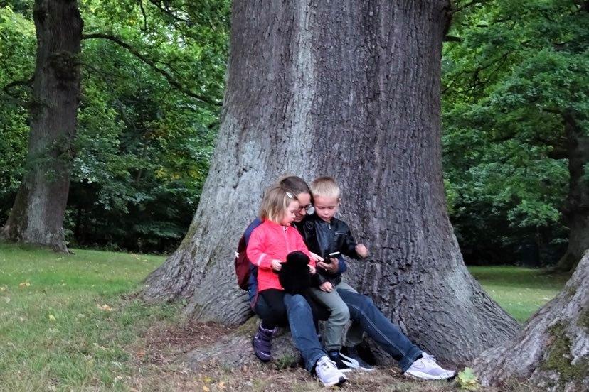 Fyldte croissanter, natureventyr og Økodag: Det skal du lave i weekenden