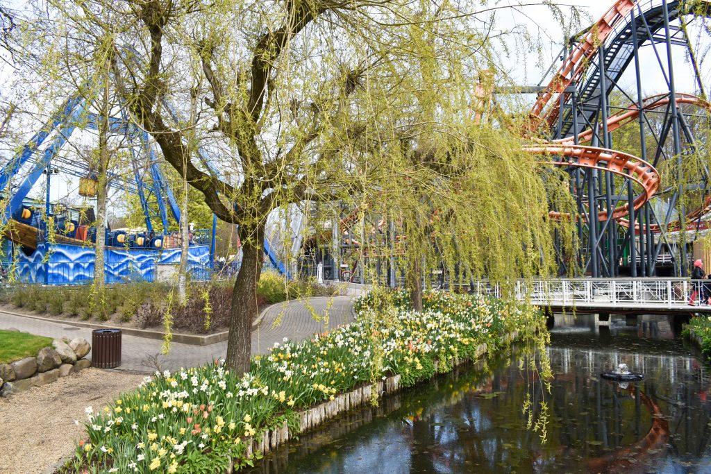 Ny forlystelse og tulipanjagt: Sæsonen i Tivoli Friheden er i fuld gang