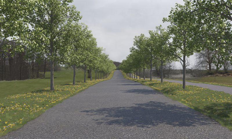 20-årige lindetræer. Grafik: Aarhus Kommune.