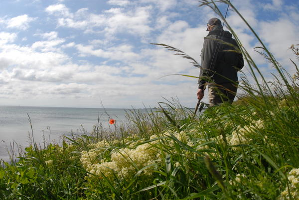 Tag med ud og fisk: Mange gode muligheder for fiskeri på Samsø